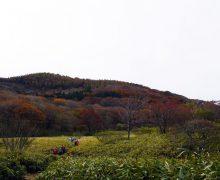 秋の皿ケ嶺